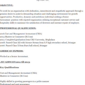 Senior Accountant Resume Template Excel Word Templates